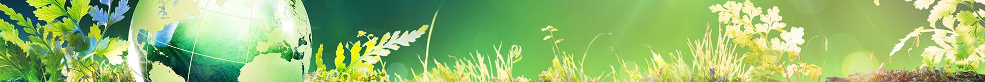 System zarządzania środowiskowego jako wsparcie procesu adaptacji do zmian klimatu15 grudnia 2020 r.
